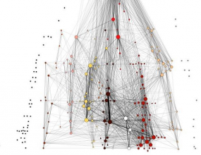 Social Network Analysis from the PhD of Thomas D'haeninck
